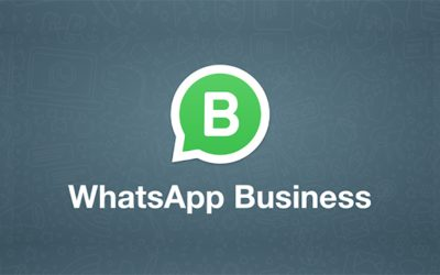 ¿Cómo monetizar por WhatsApp Business?